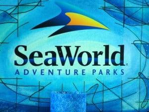 Sea_World_San_Antonio-Sea_World_San_Antonio-3000000038342-500x375-300x225