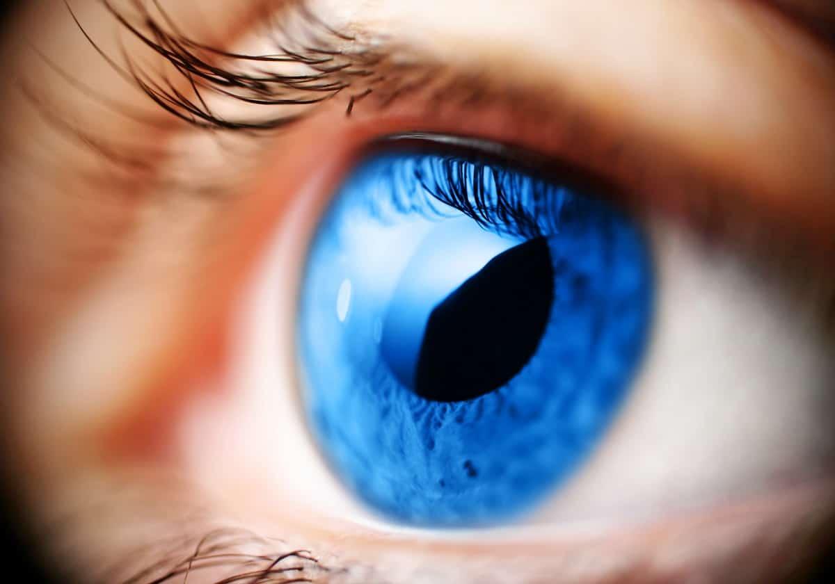 Premier Phoenix ophthalmologist and optometrists