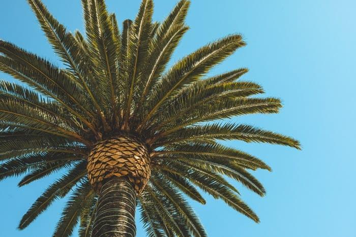 Sex After Cancer Beverly Hills, CA